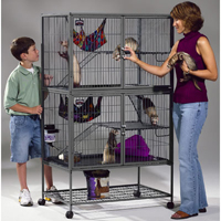 Metal Chinchilla Cage